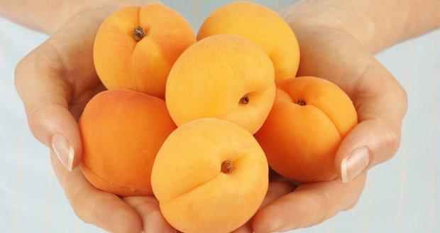 Výsledek obrázku pro meruňky