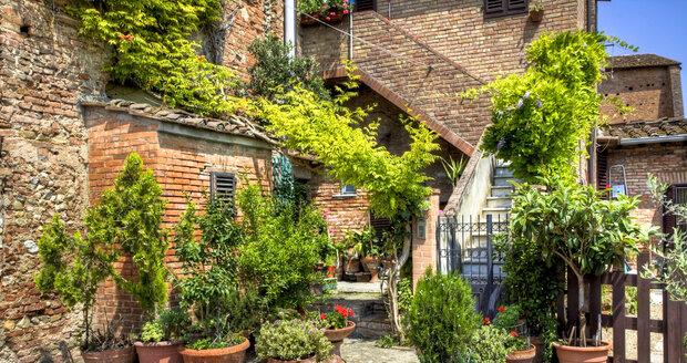 Rostlinám na terasách a balkonech musíte vybrat správné nádoby.