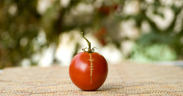 Za popraskaná rajčata si můžete sami.