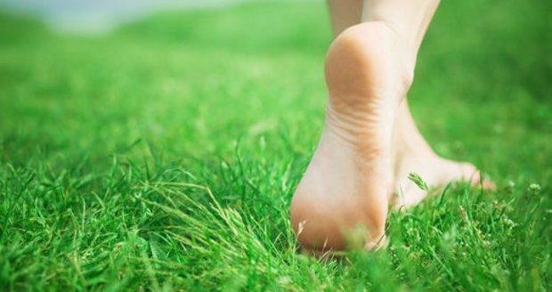 Péči o trávník rozhodně nezanedbejte!