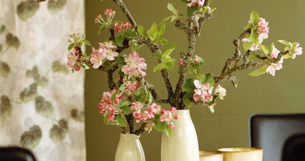 Krásně ve váze vypadají větvičky jabloně. Ale jen v případě, že je ustřihnete později. V teple by dlouho nevydržely.
