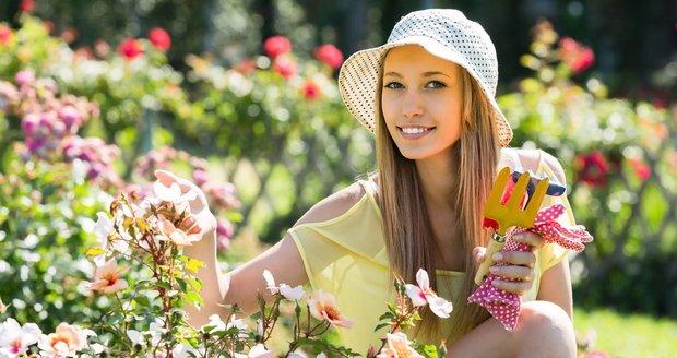 V červnu od vás zahrada očekává soustavnou péči, přihnojování a pravidelné zalévání.