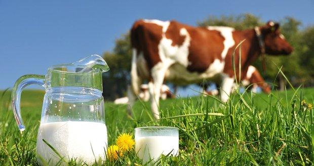 Boj o levné mléko: Kaufland kvůli cenám zkrouhnul Madetu