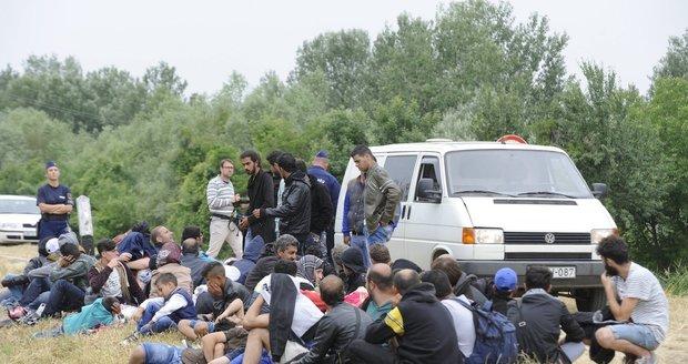 Maďarský plot proti uprchlíkům? Bude stát už za pár měsíců!