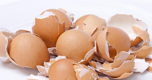 Vaječné skořápky