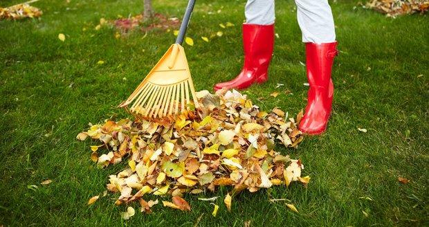 Trávník nestačí jen pravidelně sekat, zalévat a hnojit. Potřebuje totiž dýchat.