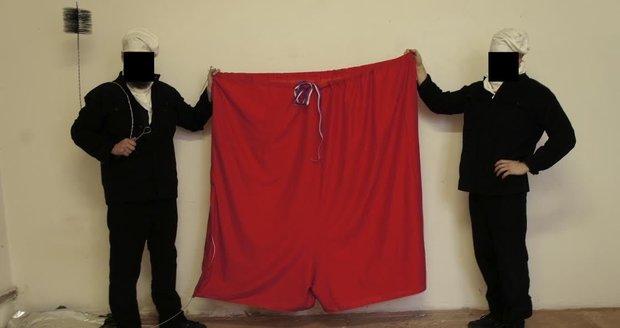 Ztohoven vyvěsili na Hradě červené trenky. Ovčáček zuří: Fašizace!