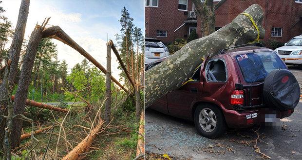 V neděli přijde do Čech silný vítr. Bude lámat větve, mohou padat stromy, varovali meteorologové. Lidé by neměli chodit na horské túry.
