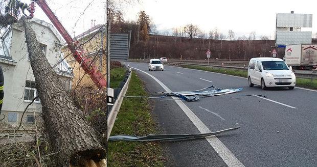 Jako předvoj zimy se Českem prohnal orkán. Lámal větve stromů, odfoukal střechy i dopravní značky.