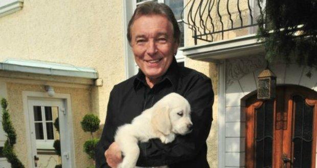 V roce 2010 držel Karel Gott v náručí malou štěněčí holčičku. Původně psa nechtěl, ale do Stelly se zamiloval.