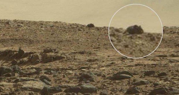Je to skutečně myš na Marsu?