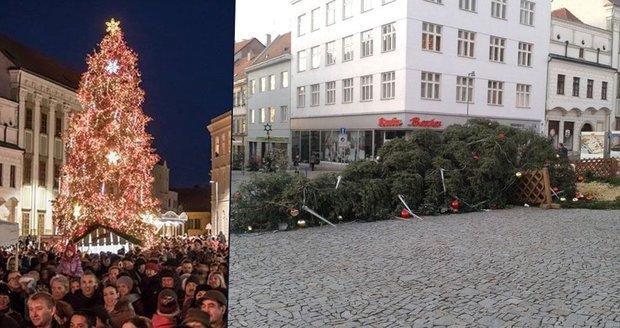Ve Znojmě se kvůli větru zřítil vánoční strom.