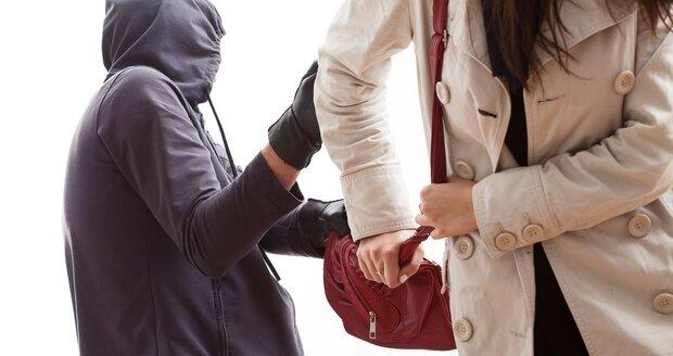 Zloděj si při odcizení kabelky přijde i na 25 tisíc korun.