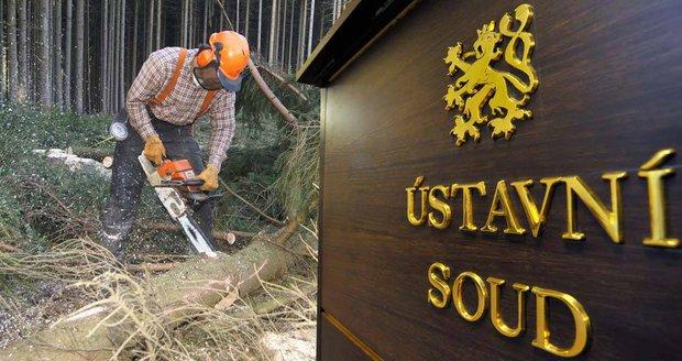 Slováci a Rumuni otročili v českých lesích. Po letech se jich zastal Ústavní soud