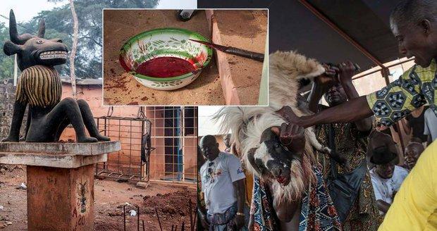 Podřezané kozy, pití ginu a prolitá krev: Z festivalu voodoo jde strach
