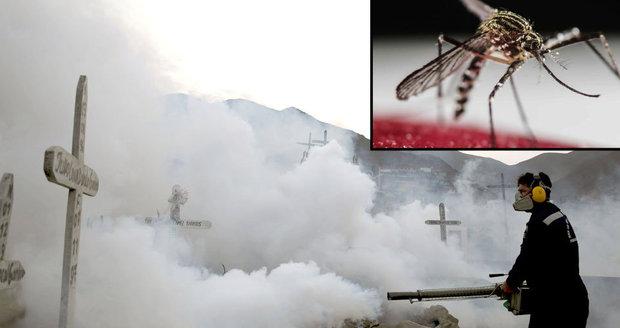 Virus zika je hrozbou pro celý svět. WHO vyhlásila stav nouze