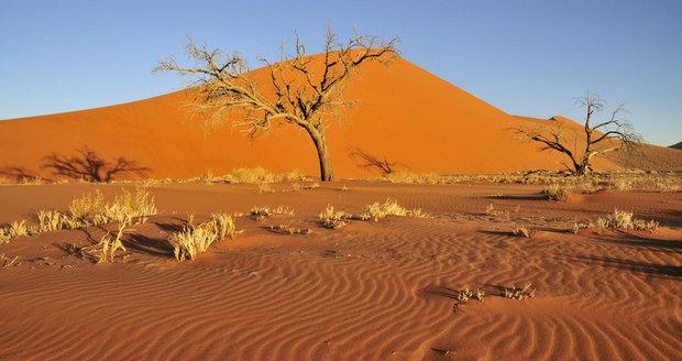 Milionům Afričanů hrozí hladomor kvůli suchu. Zimbabwe vyhlásilo stav pohromy