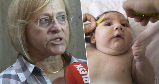 Zika v Česku: Na výsledky testů jsme čekali 9 dní, říká primářka