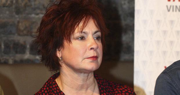 Ilona Svobodová na tiskové konferenci