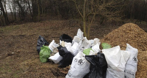 Odpad z čakovického lesoparku