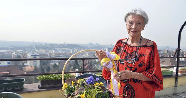 Oslavenkyni Zdence Procházkové přišel domů gratulovat i Blesk s košíkem jarních květin.