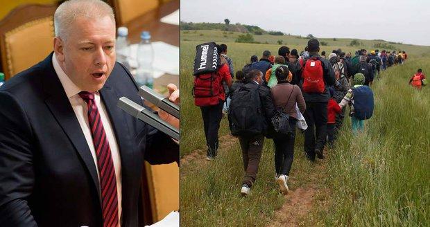 Chovanec po akci Koridor: Němci plašili, nelegální migranti Česko nevyužívají