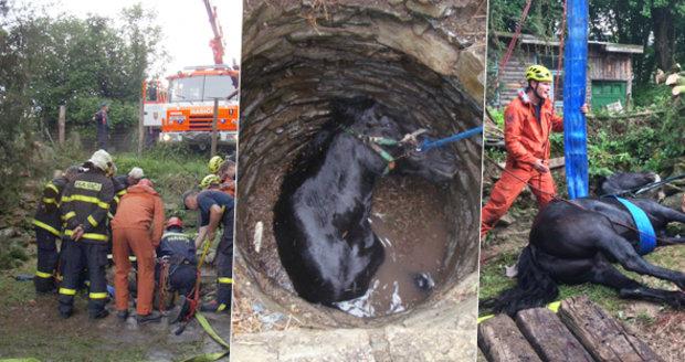 600kilového koně ze studny na Opavsku zachránili hasiči: Z hloubky 8 metrů ho tahal vyprošťovací vůz