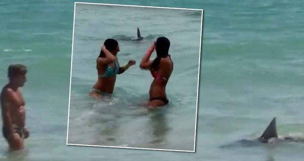 Mladík převlečený za žraloka děsil lidi v moři!