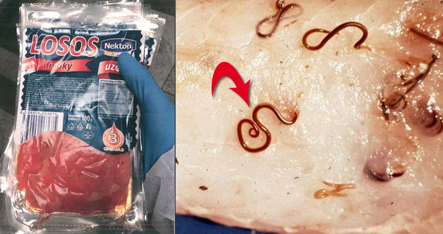 Hygiena varuje před uzeným lososem s červy. Provrtají žaludek a útočí na orgány