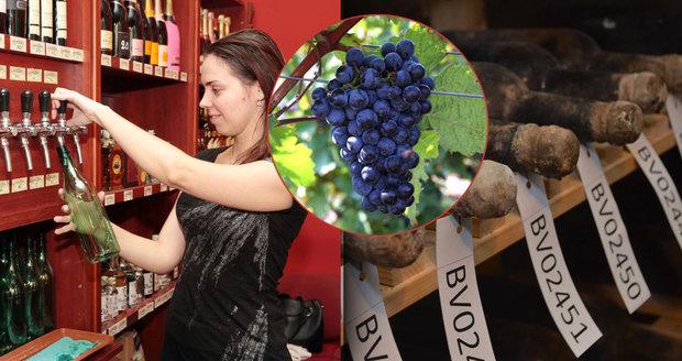 Poznáte kvalitní víno od toho pančovaného?