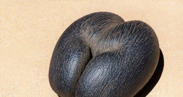 Seychely, ilustrační foto