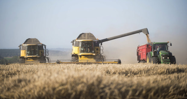 Vystřelí cena potravin? Zemědělci hlásí mizernou úrodu a bude zřejmě hůř