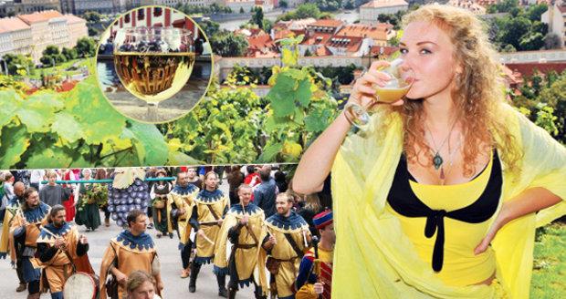 Kam letos vyrazit na vinobraní?