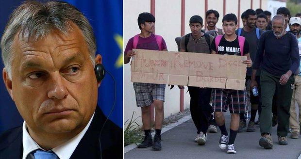Orbán varoval před přistěhovalci ve střední Evropě: Nepáchejme sebevraždu