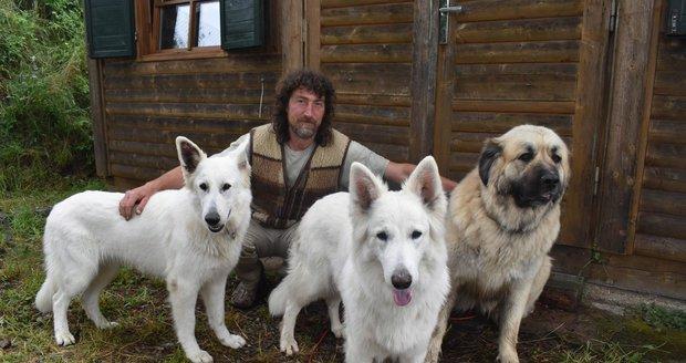Zaříkávač psů přišel se svými svěřenci o domov: Stěhování nepřežil starý vlk!