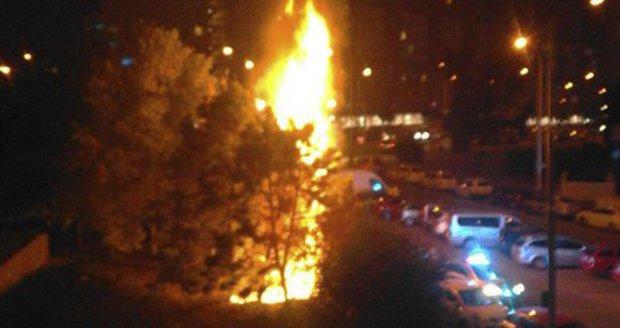 V Řepích někdo zapálil stromy.
