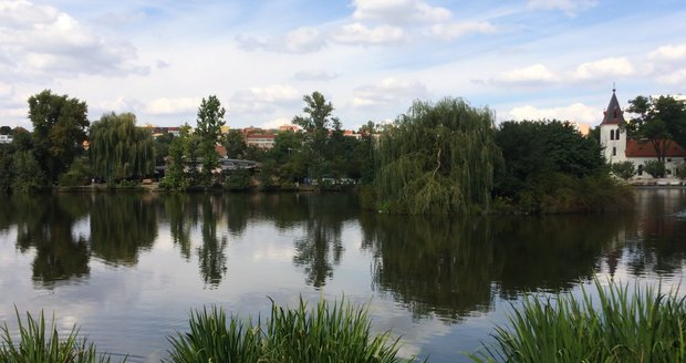 Žena spatřila polonahého muže u rybníka (ilustrační foto).