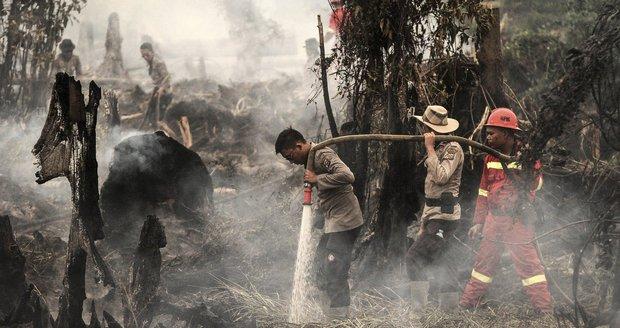 Smog z lesních požárů zabil 100 tisíc lidí. Studie: Umírali ve třech státech