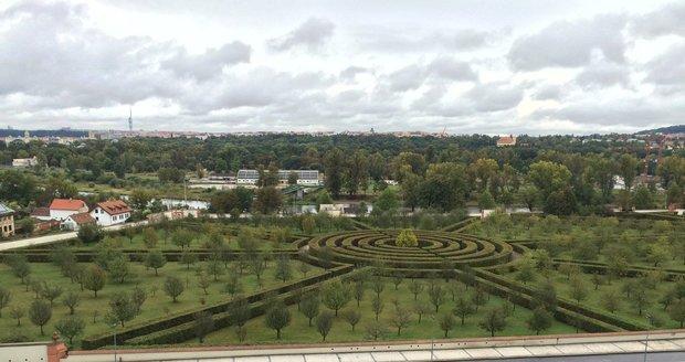 Botanická zahrada v Praze o víkendu láká na svatomartinské víno.