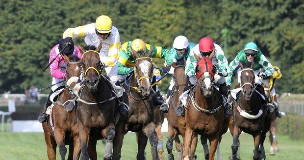 O víkendu se představí 80 koní a 20 jezdců.