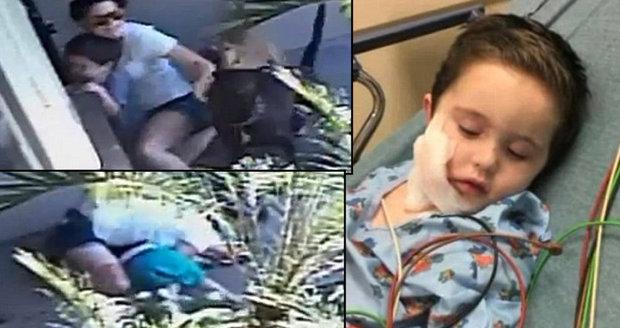 Děsivé video: Rozzuření psi se vrhli na matku s dítětem!