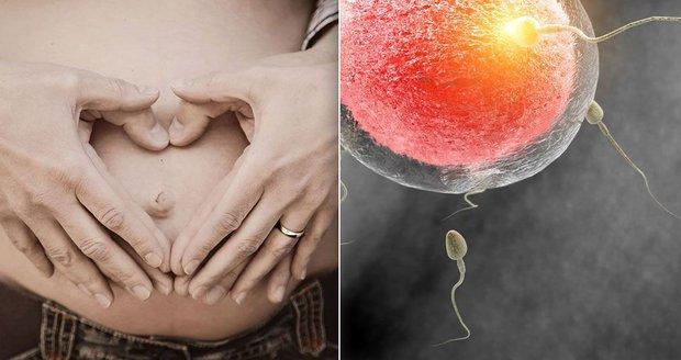 """""""V otěhotnění mi bránil sport a müsli."""" Iva: Čínská medicína to pomohla změnit"""