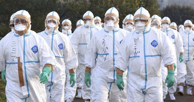 Hongkong oznámil úmrtí na ptačí chřipku