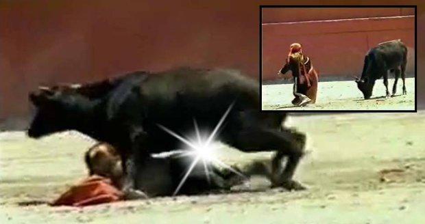 Býk znásilnil trpasličí toreadorku! Zalehl ji v koridě před zraky malých dětí