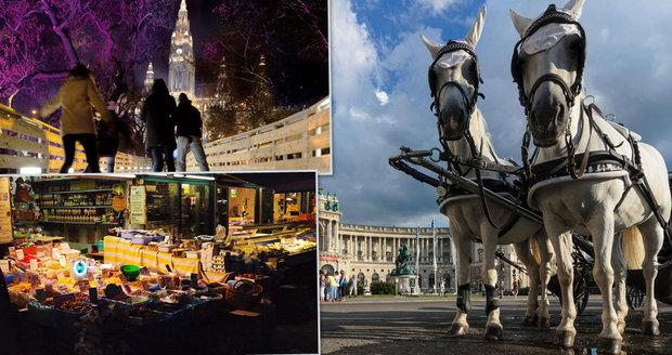 Tipy, kam se podívat ve Vídni.