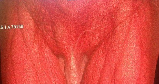Mexický velký černý penis