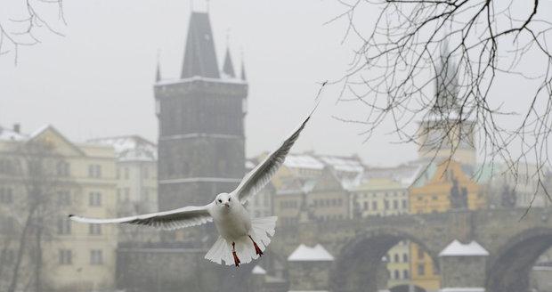 V Praze se už dýchá lépe. Smogovou situaci meteorologové odvolali