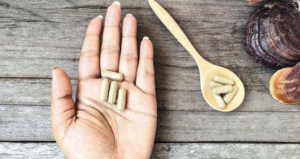 Léčivé houby – silné zbraně čínské medicíny