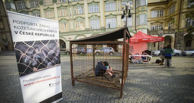 Tadeáš se na protest nechal do klece na Malostranském náměstí zavřít už v 7 hodin ráno, z klece se dostane až za 12 hodin.
