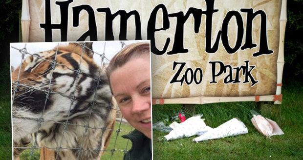 Zoo rozhodla, co bude s tygrem, který zabil ošetřovatelku. Jak zvíře skončí?